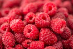 Fresh raspberry close-up. Background - fresh raspberry close-up Royalty Free Stock Photos
