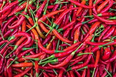 Background of Fresh red chili pepper and No pesticide residue in The organic market stock images