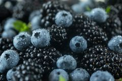 Background with fresh ripe juicy blackberries and blueberries closeup photo royalty free stock images