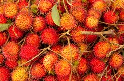 Background of fresh ripe rambutan. Juicy and mouthwatering Stock Photography