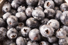 Background of Fresh Ripe Sweet Blueberries. Royalty Free Stock Image
