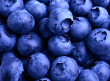 Background of Fresh Ripe Sweet Blueberries Royalty Free Stock Photo