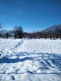 Background with a fresh snow in the blue tone stock photography