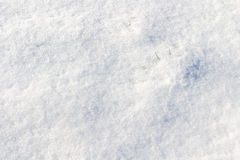 Background of fresh snow. Filter applied Stock Images