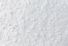 Background of fresh snow Stock Image