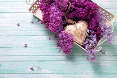 Background  with fresh splendid lilac flowers on tray  and decor Stock Image