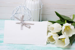 Background  with fresh spring white flowers and empty tag for yo Royalty Free Stock Photography