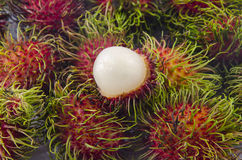 Background of fresh thai rambutans. Background of red fresh thai rambutans Royalty Free Stock Photography