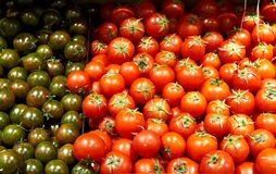 Background of fresh tomatoes Royalty Free Stock Photography