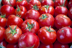 A background of fresh tomatoes Royalty Free Stock Photos