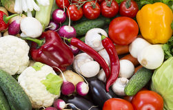 Background of fresh vegetables Stock Images