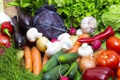 Background of fresh vegetables Stock Image