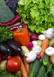 Background of fresh vegetables Stock Photography