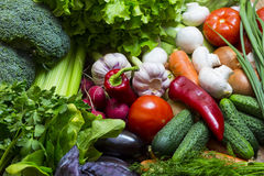 Background of fresh vegetables. Greens and tomatoes Stock Photography