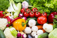 Background of fresh vegetables. Greens and tomatoes Stock Photos