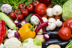 Background of fresh vegetables. Greens and tomatoes Royalty Free Stock Photography