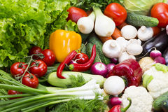 Background of fresh vegetables. Greens and tomatoes Royalty Free Stock Photos