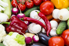 Background of fresh vegetables. Greens and tomatoes Stock Images