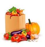Background with fresh vegetables in paper bag. Hea Stock Images