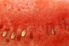 Background of a  fresh watermelon piece Stock Images