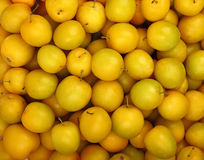 Background of fresh yellow plums close up Stock Image