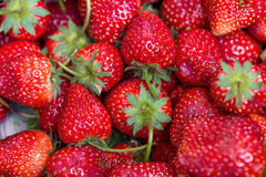 background from freshly harvested strawberries, directly above Royalty Free Stock Photography