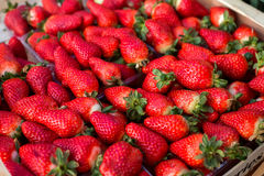 Background from freshly harvested strawberries. Directly above royalty free stock image