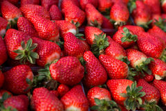 Background from freshly harvested strawberries. Directly above royalty free stock photo