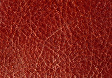 Background From A Red Leather. Stock Photography
