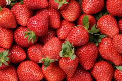 Background From Freshly Harvested Strawberries Royalty Free Stock Photography