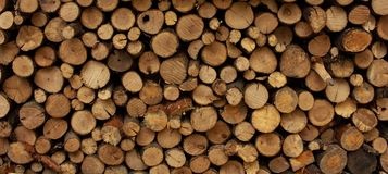 Background From Round Dry Firewood In A Pile For Kindling A Stove Stock Photos