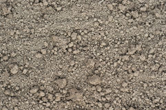 Free Background From Soils. Stock Photo - 33972000