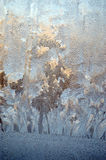 Background frost on the window Stock Image