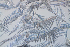 Background from frosty pattern on glass Royalty Free Stock Image