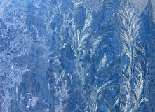 Background Frosty pattern on glass Royalty Free Stock Images