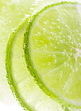 Background with fruit lime Stock Image