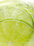 Background with fruit lime Stock Photography