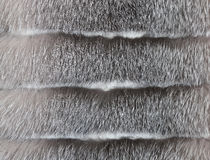 Background of a fur texture of expensive fur-bearing Royalty Free Stock Photo