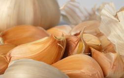 Background garlic Royalty Free Stock Images