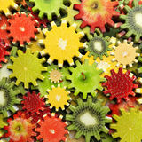Background of gears made with fruit Royalty Free Stock Image