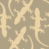 Background Gecko Royalty Free Stock Image
