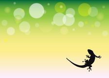 Background with gecko silhouette Stock Photos