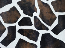 Background of giraffe skin Stock Photos