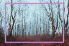 Background. A glowing pink neon rectangle framed over a spooky, misty winter forest. With a coloured blurred edit.  royalty free stock images