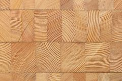 Background with glued larch wooden blocks. Royalty Free Stock Image