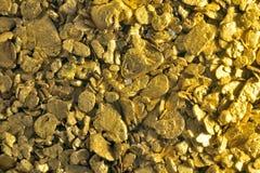 Background gold glitter Stock Image