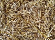 Background of golden brown straw Royalty Free Stock Photos