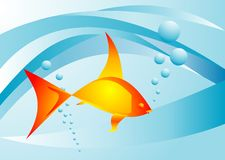 Background with goldfish Royalty Free Stock Images