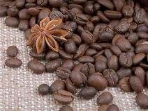 Background from grain of coffee and anise spilled Stock Image