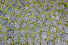 Background of granite pavers and green grass makes its way betwe. En the stones Royalty Free Stock Images